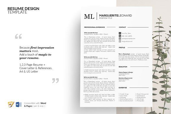 Resume Templates Design CV Template