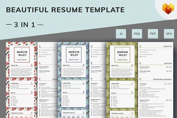 Resume Templates Design Visual Artist Resume Template