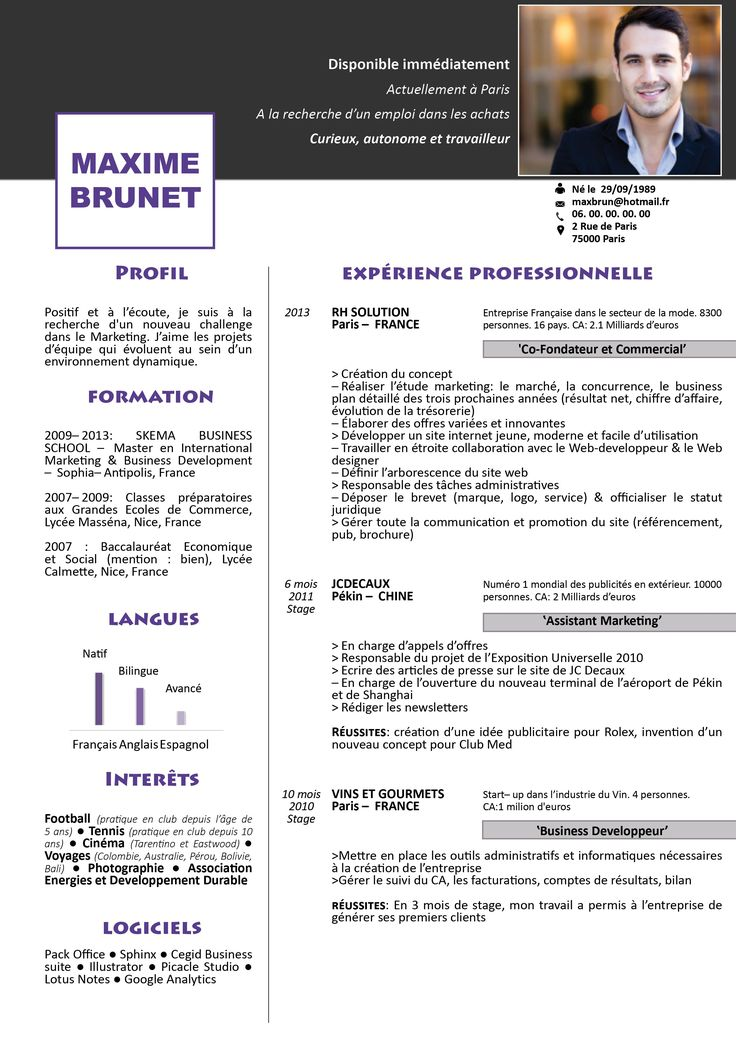 Resume Infographic Modele De Cv Colonne A Telecharger Resumes Tn Home Of Resumes Inspiration Ideas Beautiful Professional Resume Ideas That Work