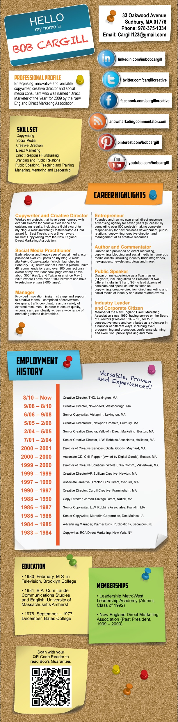 Resume infographic : A second version of my infographic