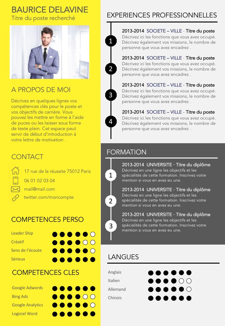 Resume Infographic Cv Gratuit Design Et Original Resumes
