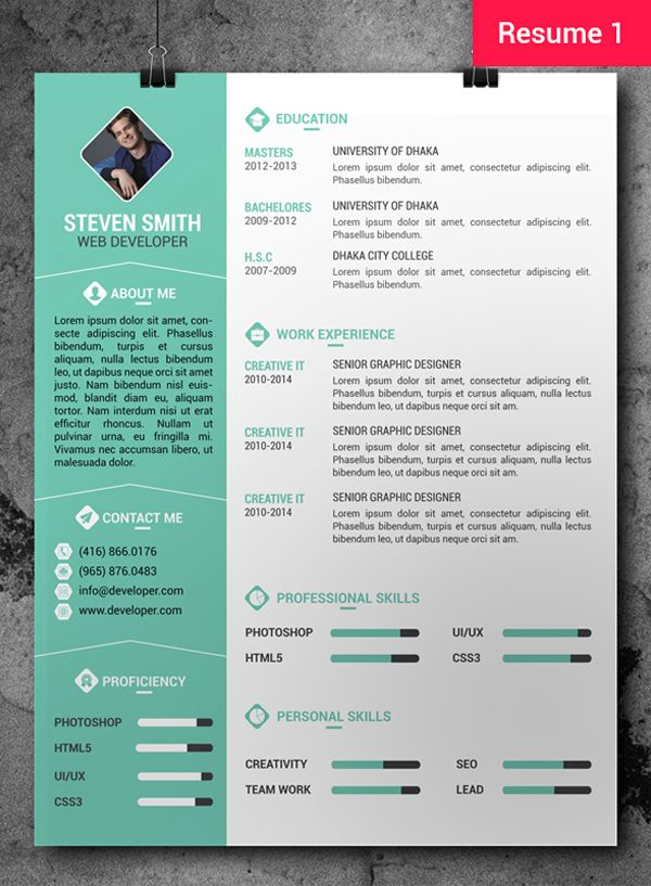Resume infographic : Free Professional Resume/CV Template + ...