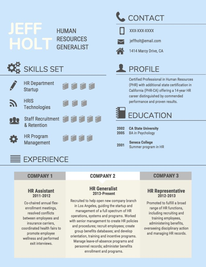 Resume Infographic Human Resources Professional Resume Craft A