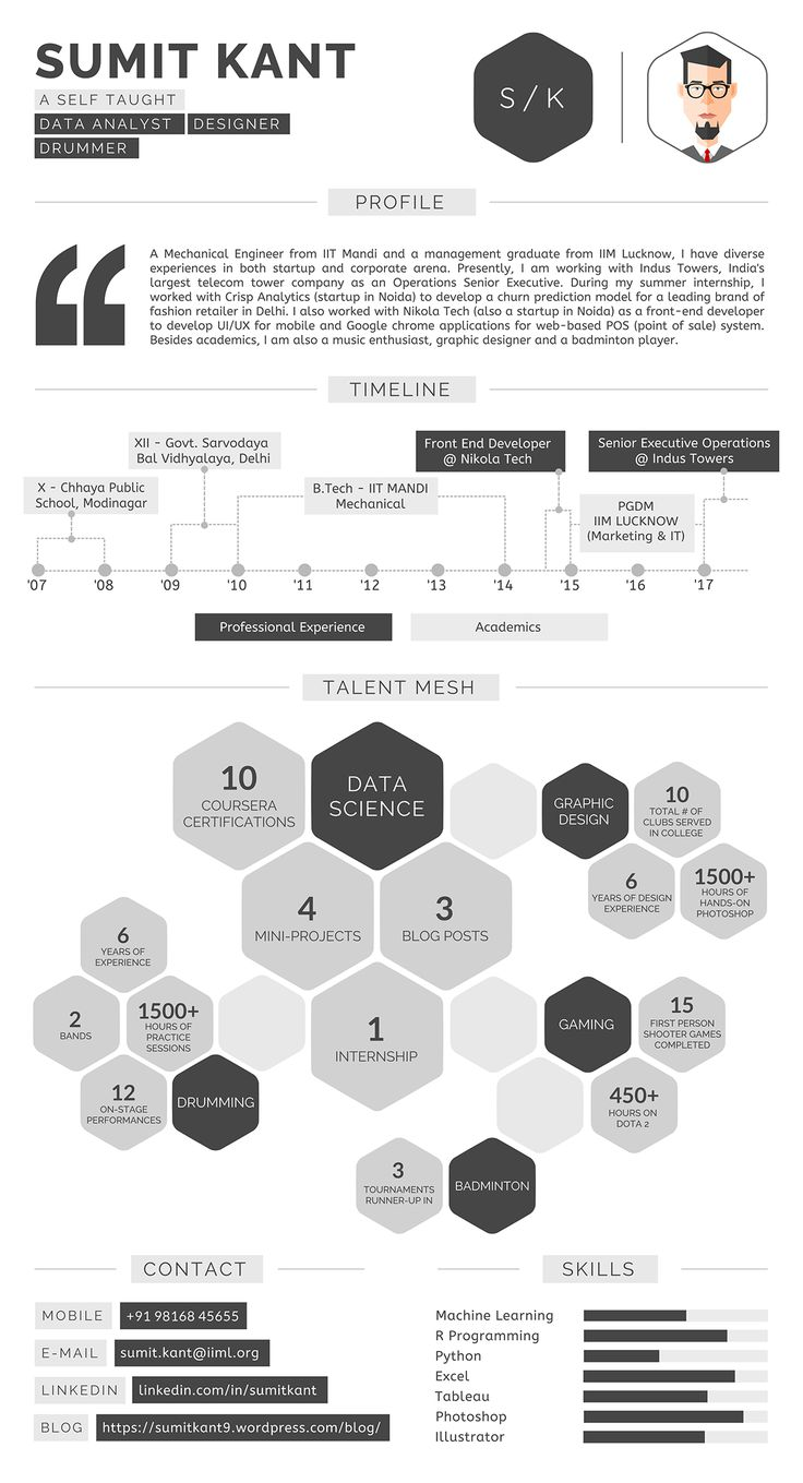 Resume Infographic By Sumit Kant On Behance
