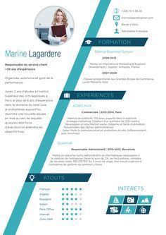Resume Infographic Télécharger Modèle Cv Word Original