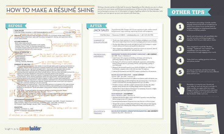Resume Infographic How To Make