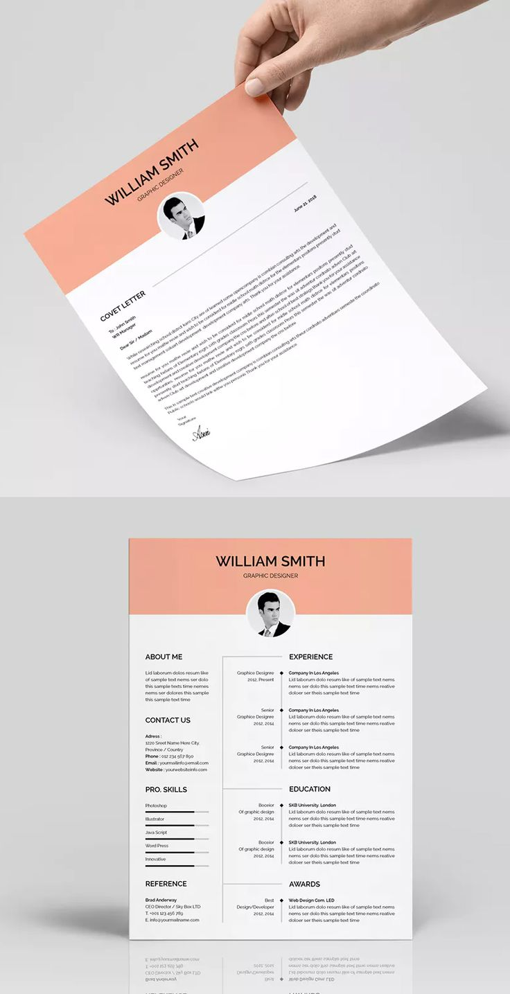Resume Templates : Resume Template AI, EPS, PSD & MS Word ...